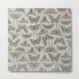 Lepidoptera Beige Metal Print