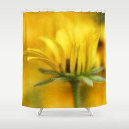 Summer Warmth Shower Curtain