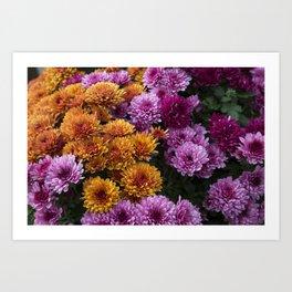 Purple & Orange Art Print