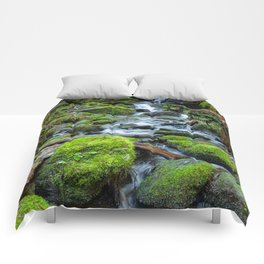 Downstream Comforters