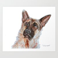 german shepherd Art Prints featuring German Shepherd by N.Romano