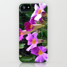 Taking Up the Mantle II iPhone Case