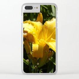 Beautiful Yellow Iris Open to the Sun Clear iPhone Case