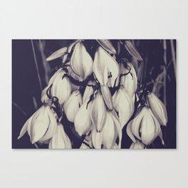 Cactus Photography, Desert Art, Cactus Flowers, Blueprint Art, Vintage Style, Modern Wall Art Canvas Print