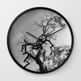 Old Spooky Bare Tree Branches Wall Clock