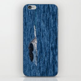 Whale Near Dana Point iPhone Skin