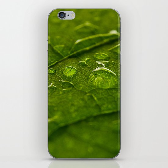 Green Bubbles 2 iPhone & iPod Skin