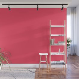 Sun Kissed Pink Coral Wall Mural