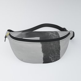 Black Swan 12 bw Donegal Ireland Fanny Pack