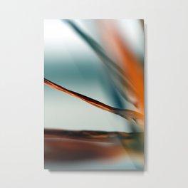 Strelizia Metal Print