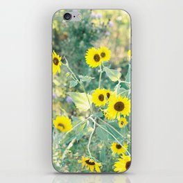 Midwest Sunflowers iPhone Skin