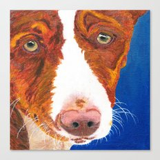 Josefina (old man eyes) Canvas Print