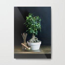 Bonsai Still Life Metal Print