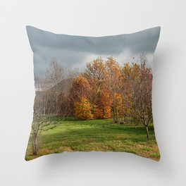 colorful trees in park in autumn Throw Pillow
