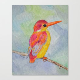 Rufous-backed Kingfisher Canvas Print