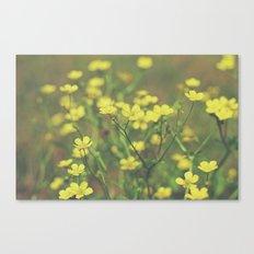 Hello Buttercup! Canvas Print