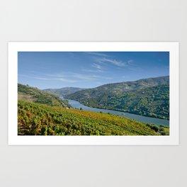 The Douro Valley, Peso da Regua Art Print