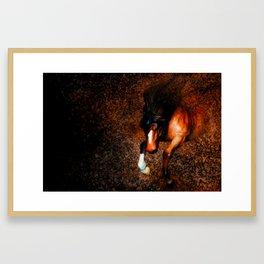 Of Knight's Steed Framed Art Print
