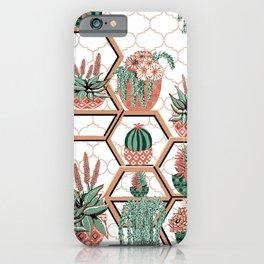 Succulent Garden. Echeveria, Cacti, plants, aloe vera, pachyveria, haworthia, holiday gift iPhone Case