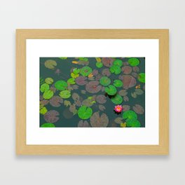 Lily Pads Framed Art Print