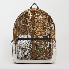 Maple Beech Forest in the Winter Backpack