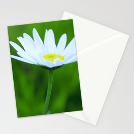 Daisy Stationery Cards