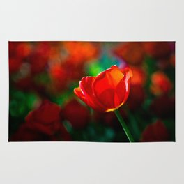 Red tulip - Mystery of blooming Rug