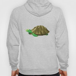 Geometric Turtle Hoody