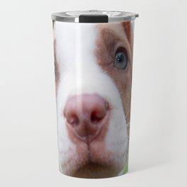 cute pit bull dog brown nose close Travel Mug