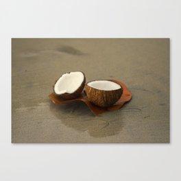 Coconut Canvas Print