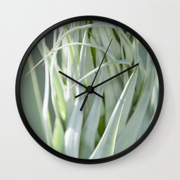 Smooth Cactus Core Wall Clock