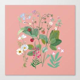 Big summer meadow Canvas Print