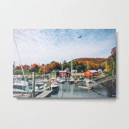 Fall in Maine Metal Print