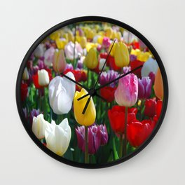 Colorful Springtime Tulips in the Netherlands Wall Clock