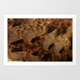 houtsnip woodcock detail feathers  Art Print