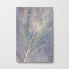 Raindrop Leaf Metal Print