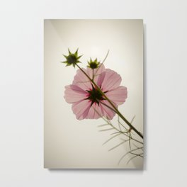 Under the Cosmos Metal Print
