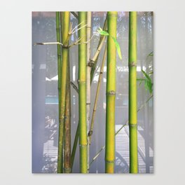 Bamboo Stems on Reflection Background-Summer Mood Canvas Print