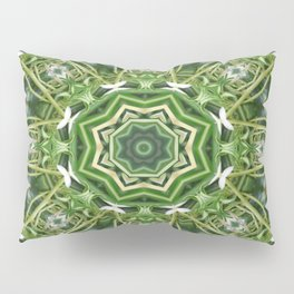 Spider Plant Kaleidoscope Art 5 Pillow Sham