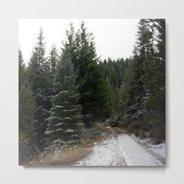 First winter snow.. Metal Print