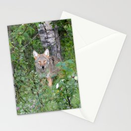 Random nature pics Stationery Cards