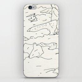 lake rocks iPhone Skin