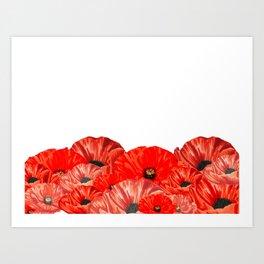 Poppies on White Art Print