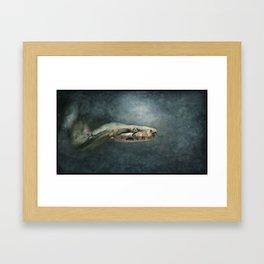 Trust in me...... Framed Art Print
