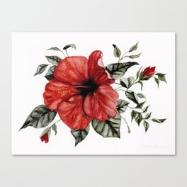 Blooming Red Hibiscus Canvas Print