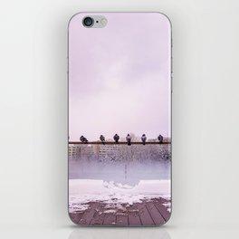 Winter Show iPhone Skin