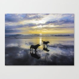 Alone on the beach at sunset Canvas Print