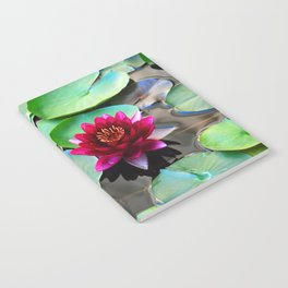 Red water lily Notebook