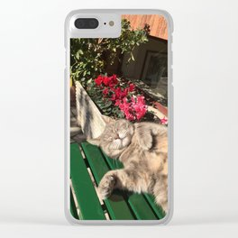 Cornelia The Cat Clear iPhone Case