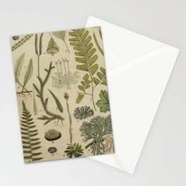 Ferns And Mosses Stationery Cards